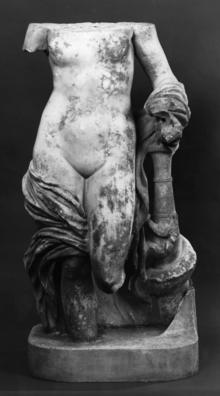 Universität Leipzig, Antikemuseum: Venus
